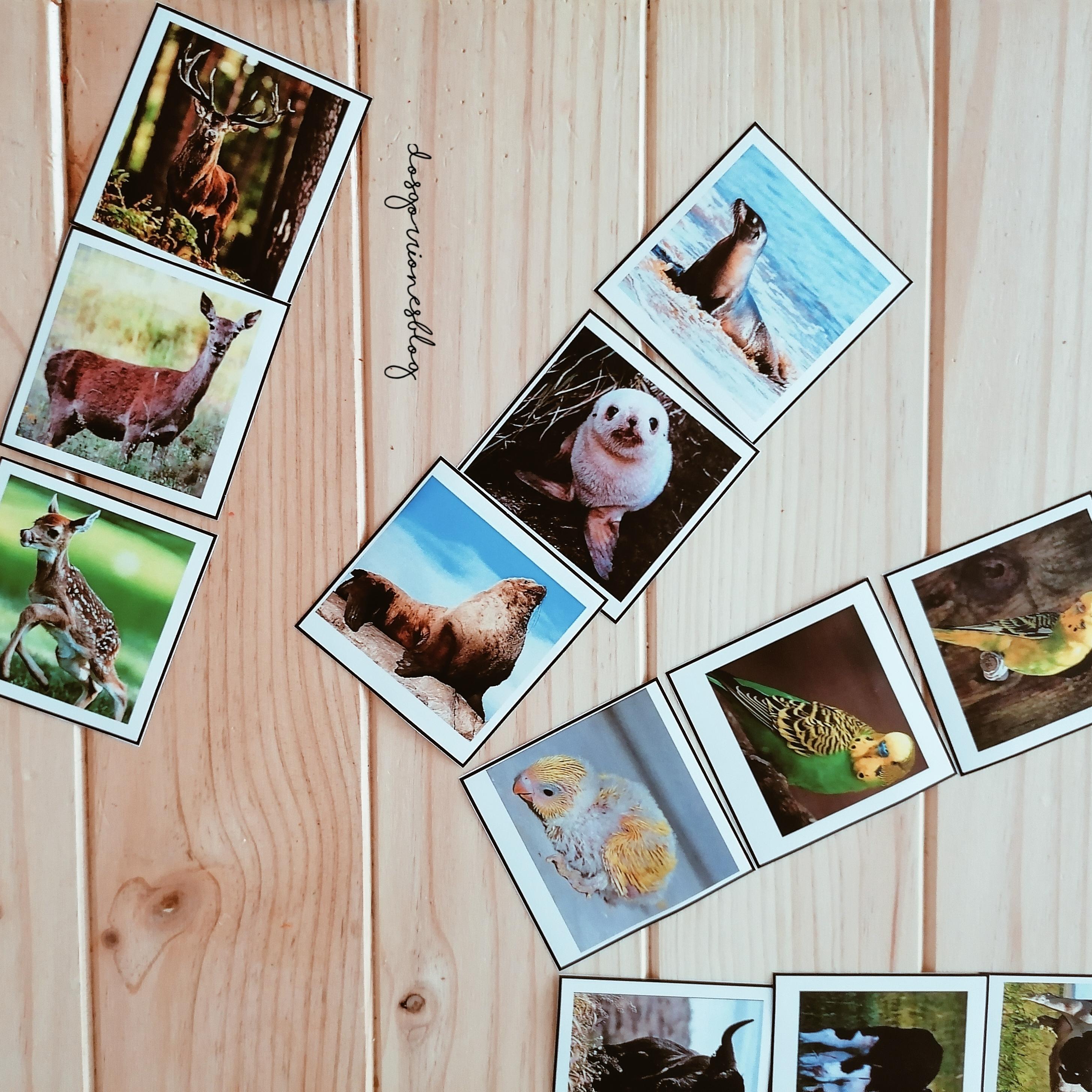 Photo_1594752426393